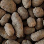 Kartoffelsaison ist zu Ende
