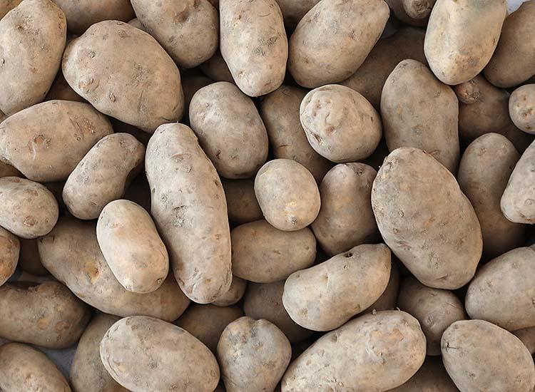 Kartoffel_Hofladen_750x550px